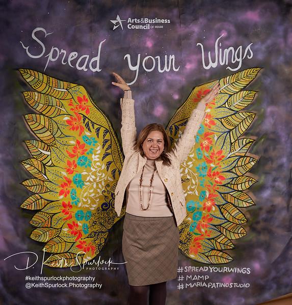 DS904958 MAMP2019-Wings.jpg
