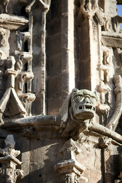 Gargoyle, Santa Maria de la Sede Cathedral, Seville, Spain