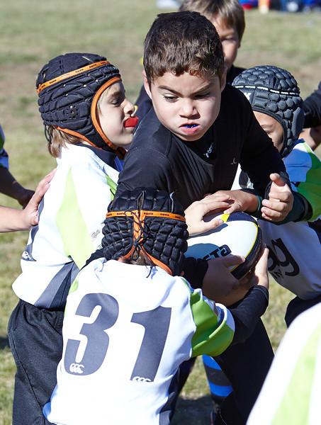 1047_09-Nov-13_RugbyOrcasitas.jpg