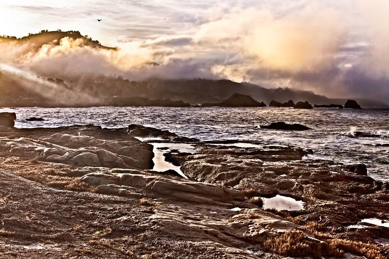 Point Lobos early morning_3399-Edit-Edit.jpg