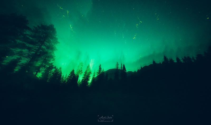08_10-13_2017_Yosemite_HalfDome_NightShot_01.jpg