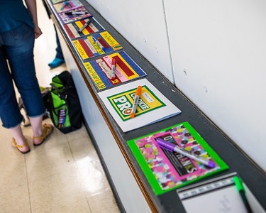 Girls Scouts Lending Library 2019