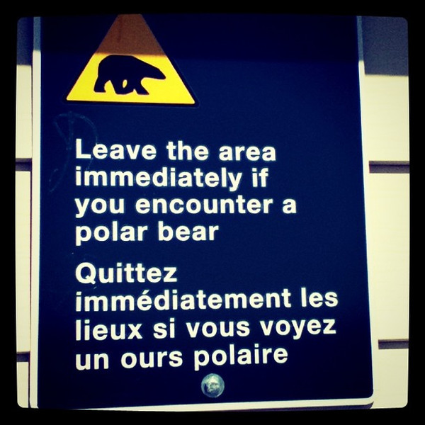 Good advice in Churchill Manitoba