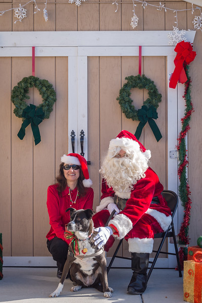 Pet Pictures With Santa-44.jpg