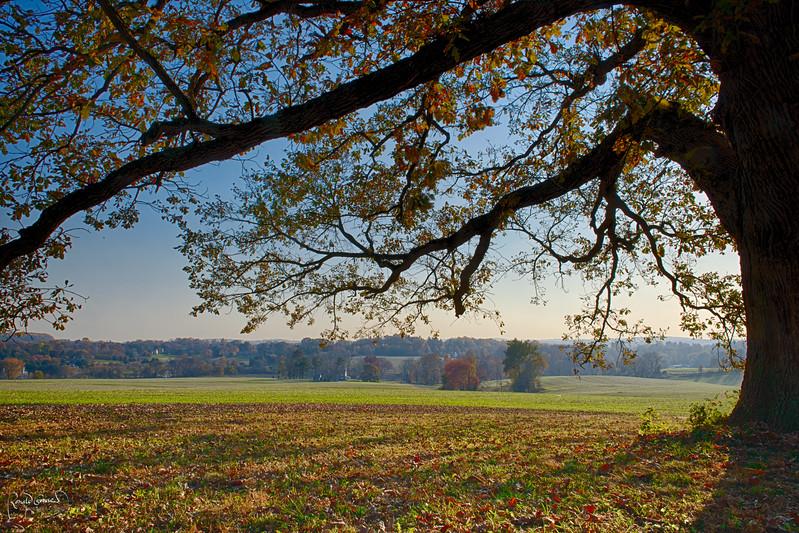 2012-10-24 at 13-32-58_HDR.jpg
