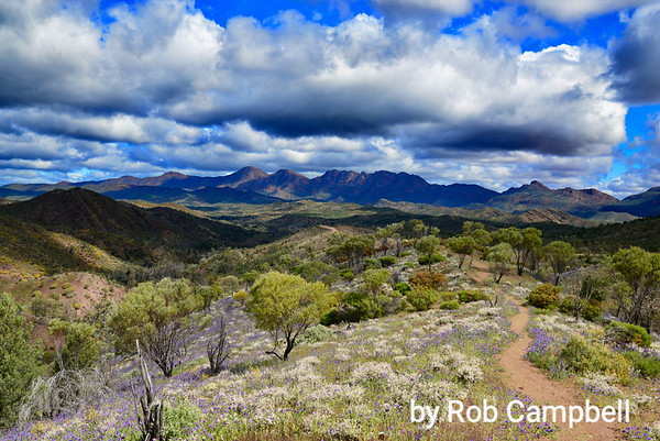 Rob's Flinders Ranges