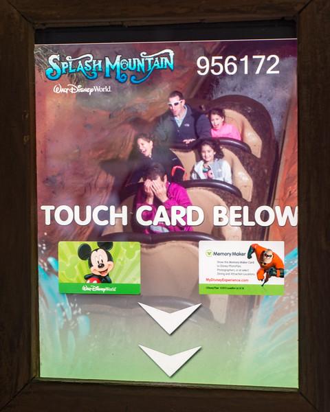 Splash Mountain Photo - Magic Kingdom Walt Disney World