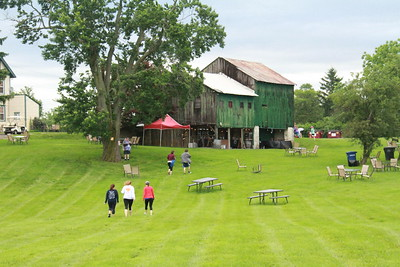 Run the Vineyards - Wines and Vines 5K (June 3rd)