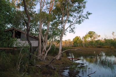 Galiwinku Swamp July 2008