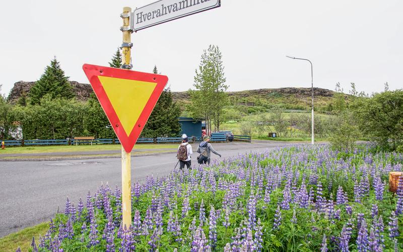 Iceland 3326.jpg