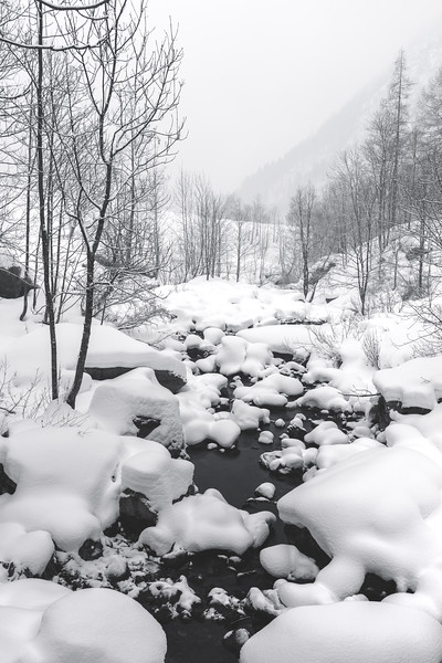 Winter Creek I