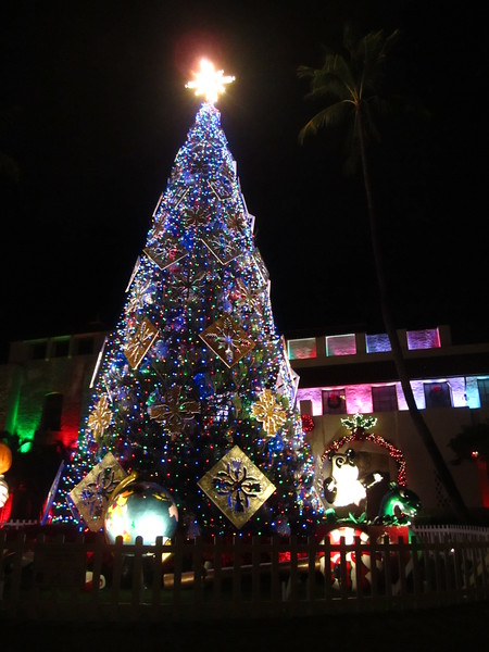Hawaii - Honolulu City Lights-29.JPG