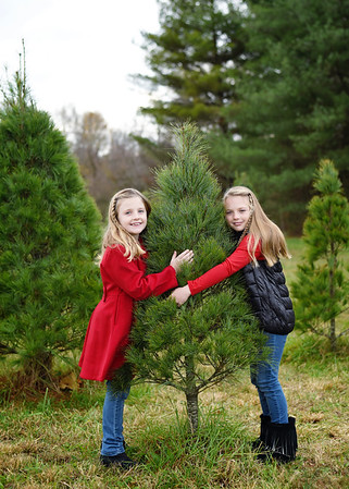 Libbie & Charlotte {tree mini}
