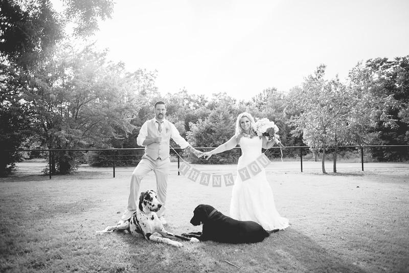 2014 09 14 Waddle Wedding - Bride and Groom-805.jpg