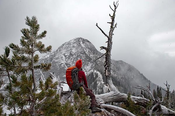 Selkirk Peak