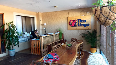 Tico Lingo School