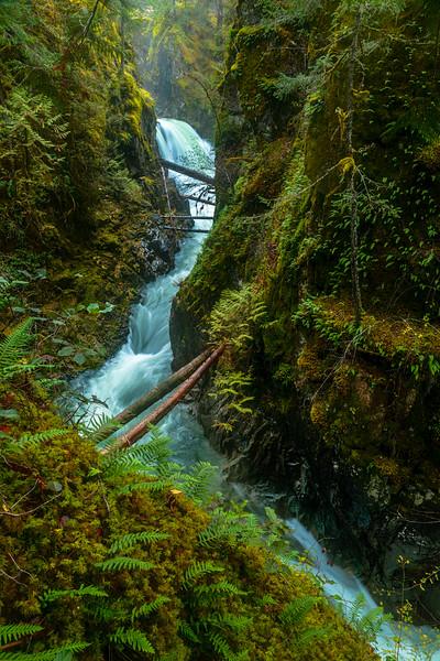 Little Qualicum Falls Upper
