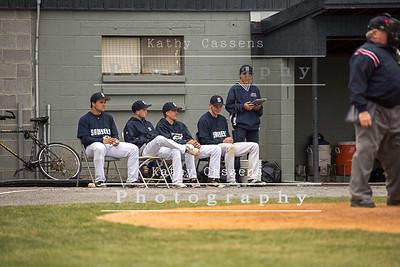 Rhinebeck Baseball 2016