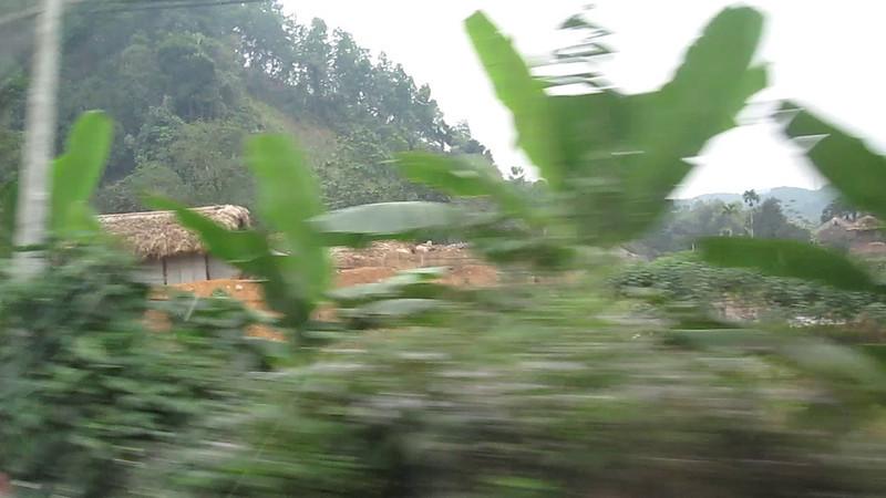 2010-01-12-Vietnam Return 3