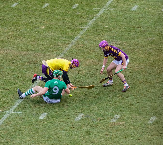 2018 Limerick vs Wexford -_8503650.jpg