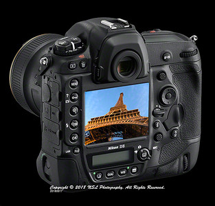 Nikon D5 with image displayed on monitor for review.