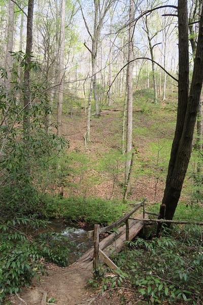Buckhorn Gap Trail