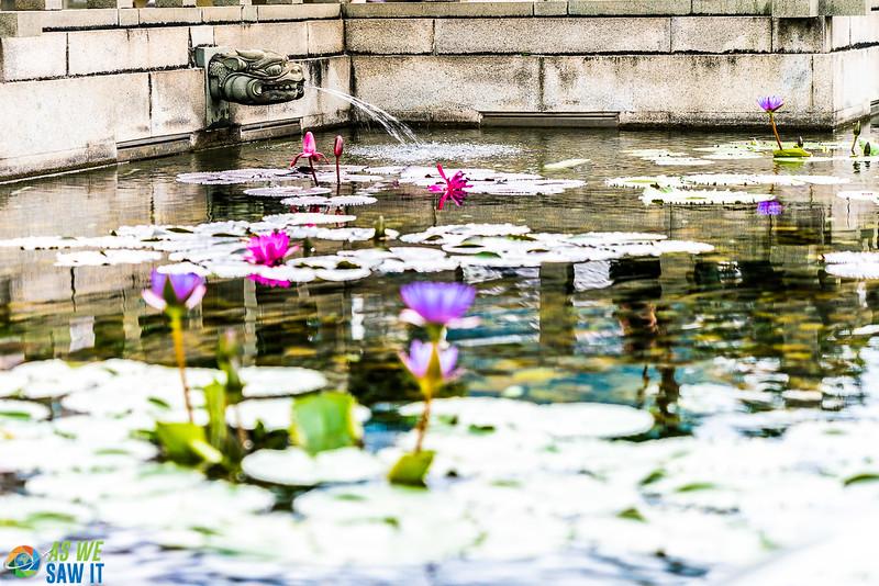 Nan-Lian-Garden-00288.jpg