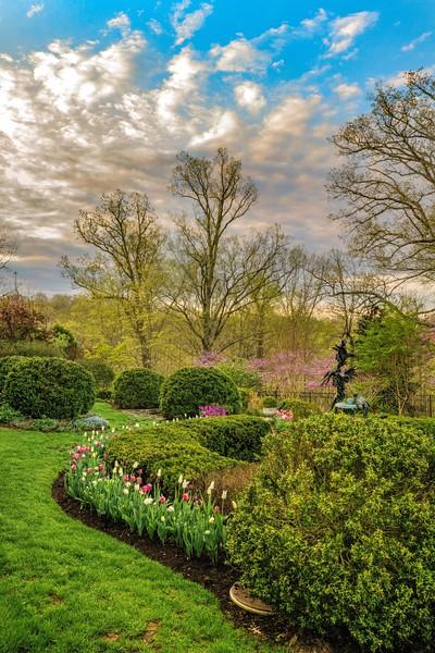 Garden 1, 324.jpg