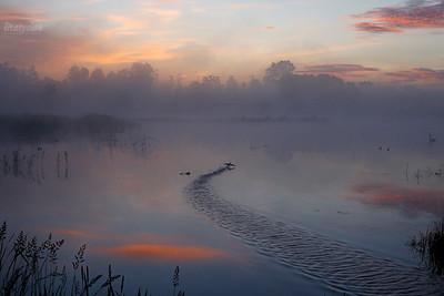 Ziemia Chełmońskiego / Land of Chelmonski