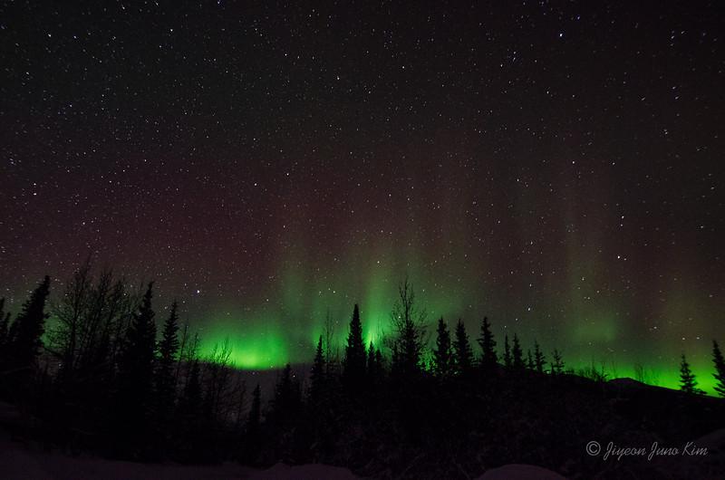 USA-Alaska-Wiseman-Aurora-2765.jpg