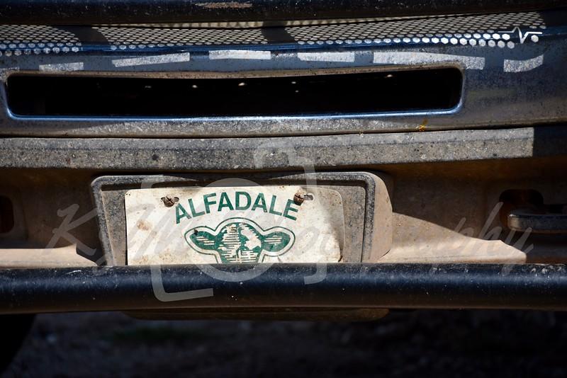Alfadale Stock Farms