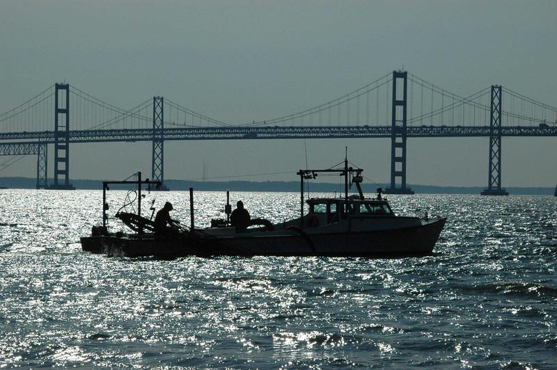 Oyster-Dredging-of-Sandy-Po.jpg