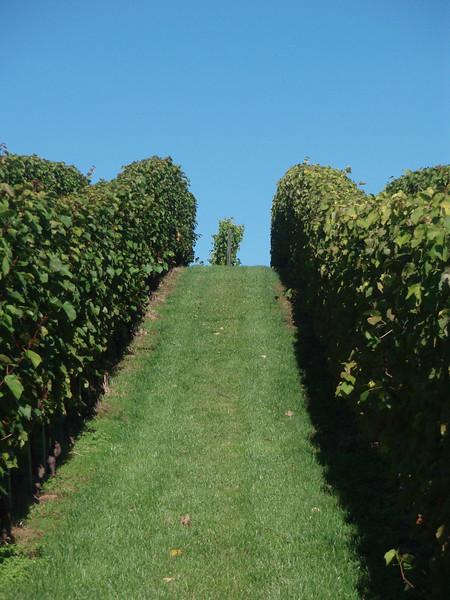 Gran Pre Winery