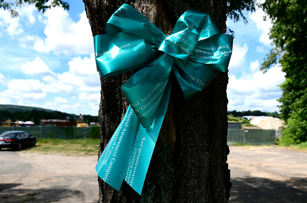 9/4/2018 Mike Orazzi | Staff Teal ribbons along Main Street in Bristol.