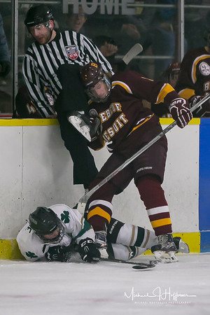Hockey vs. Westfield_2/29/18