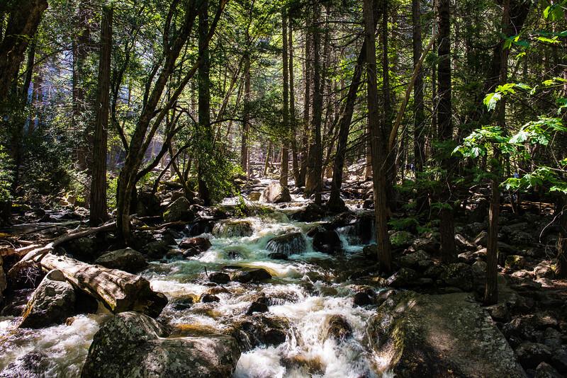 2019 San Francisco Yosemite Vacation 036 - Bridalveil Falls.jpg