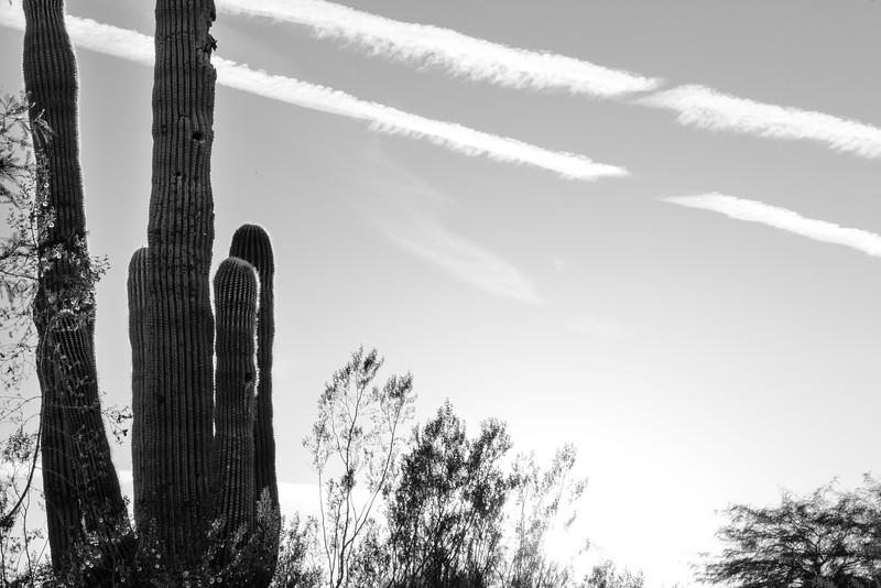 2016-11-23 Family Thanksgiving in Arizona 005.jpg