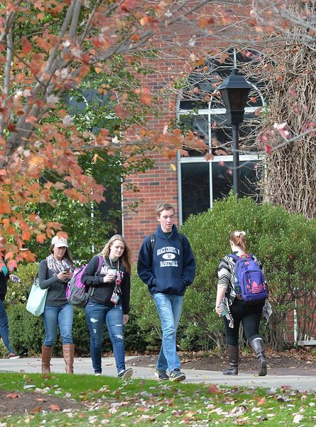 campus3143.jpg