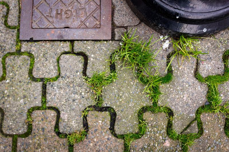 bastion-square-photowalk-31.jpg