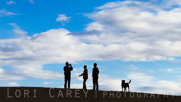 2014 Tierra del Sol Desert Safari