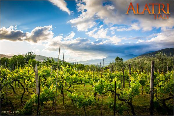 2013 Alatri Italy