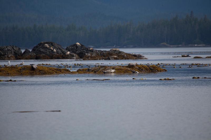 Alaska-120.jpg