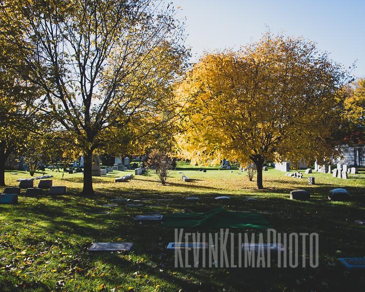 Graceland110218-280.jpg