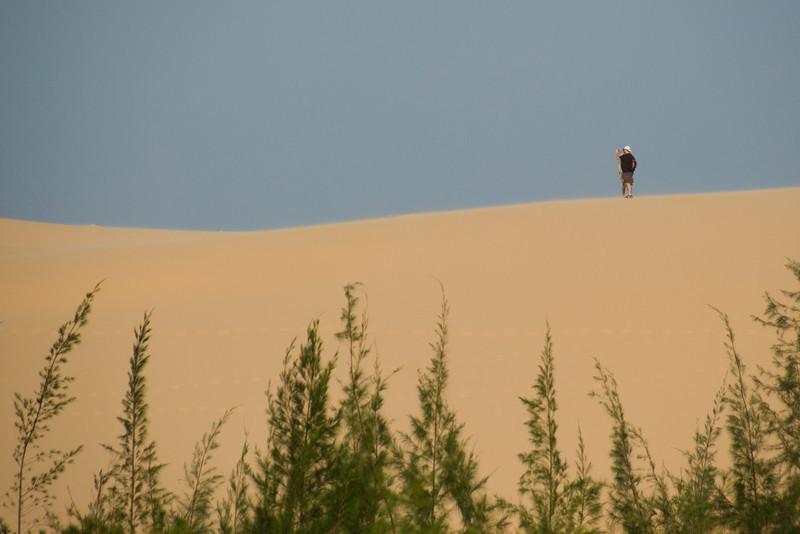 White sand dunes behind grass fronds - Mui Ne, Vietnam