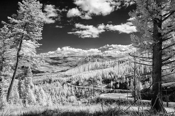 Yellowstone Infrared