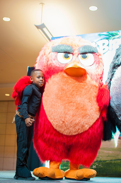 Angry Birds StoneCrest Mall 108.jpg
