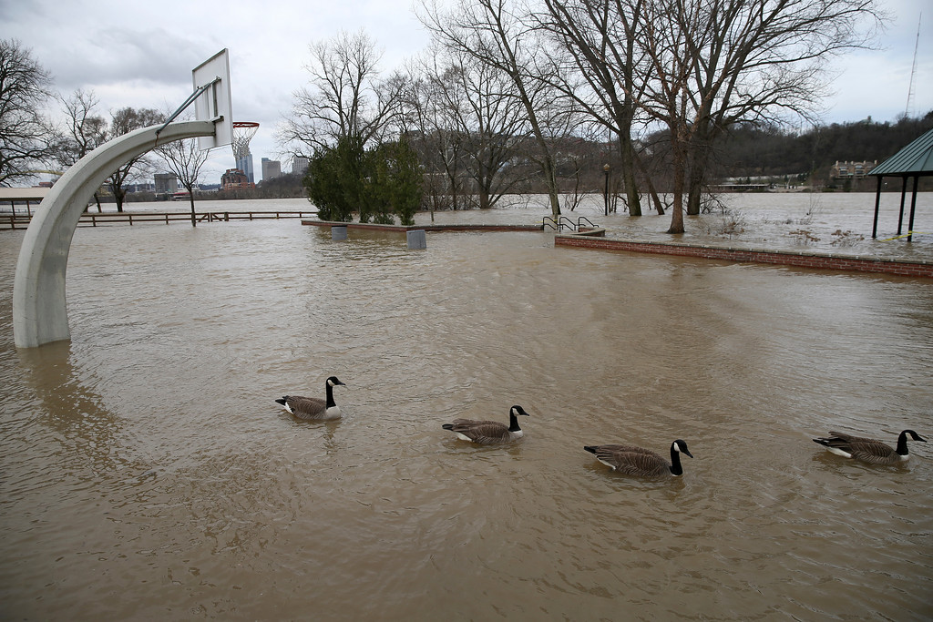 . Waters from the Ohio River flood a basketball court Bellevue Beach Park, Sunday, Feb. 25, 2018, in Bellevue, Ky. The weather service said moderate flooding was expected along the Ohio River in Kentucky and Ohio, including in Cincinnati, where the river was 8 feet above flood stage Sunday. (Kareem Elgazzar/The Cincinnati Enquirer via AP)
