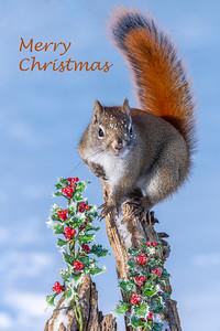 Dec. 22, 2019 - Merry Christmas