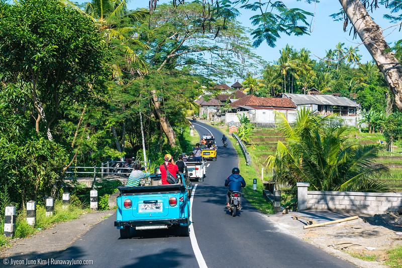Bali-6103387.jpg