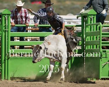 Bull Riding Sunday BCHSR 2015